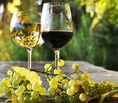 vino bianco italiano chardonnay pinot grifio